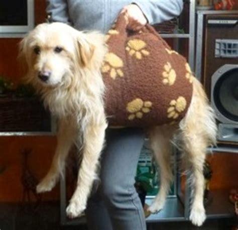 Tragegurt Für Große Hunde