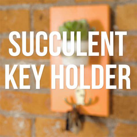 diy succulent planter key hook kitchendesignvideo kitchen layout ideas