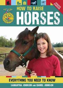 Choosing A Horse That U0026 39 S Right For You - Animals