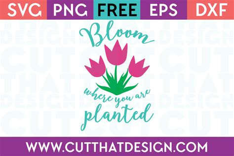 Share this post with others. Free SVG Files | Bloom where you are planted, Spring ...