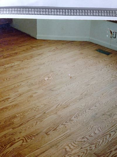 Floor Refinishing Michigan by Home Newly Refinished Oak Hardwood Floors Project Gallery