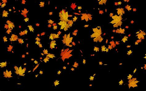 Falling Leaves Wallpaper Animated - animated falling leaves background 3 background check all