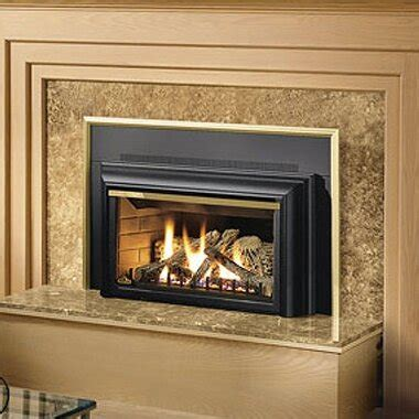 Gas Wall Fireplace by Napoleon Direct Vent Wall Mount Gas Fireplace Wayfair