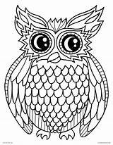 Coloring Owl Printable Bird Adults Animals Night sketch template