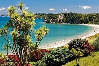 Zealand Haruhi Bay Te Tree Regional Park