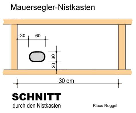 Vögel Im Vogelhaus 3354 by Mauersegler Apus Apus Erfahrungen Mit Der Ansiedlung