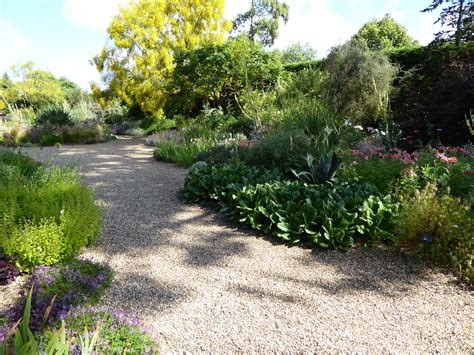 how to make a gravel garden expert advice 11 tips for gravel garden design gardenista
