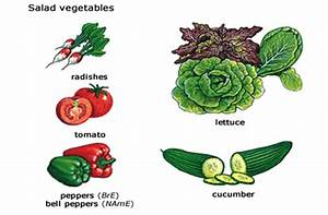 Components Of Food Cbse Science Class 6 Chapter Wise Solved Q U0026a