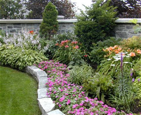 landscaping ideas small shrubs for landscaping zone 5