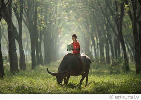 Skaistas bildes no Indonēzijas - enkurs.lv