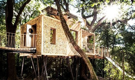 The Woodman's Treehouse   Cool Material