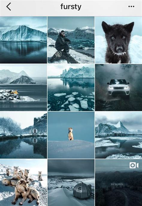 develop  visual theme   instagram business