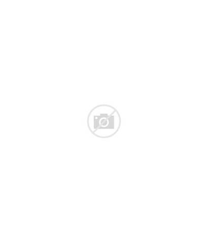 Dieren Kerstkaartensturen Bomen Landschap Kerstkaart Winter Terug