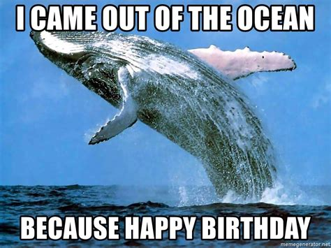 Ocean Memes - i came out of the ocean because happy birthday whaleeee meme generator