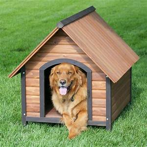 outside dog houses for large dogs his dog was feeling With outdoor dog houses for extra large dogs