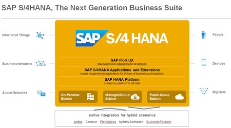 hana  future   sap blogs