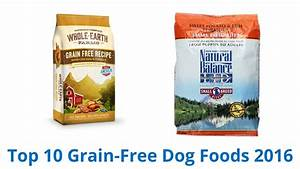 10 Best Grain Free Dog Foods 2016 YouTube