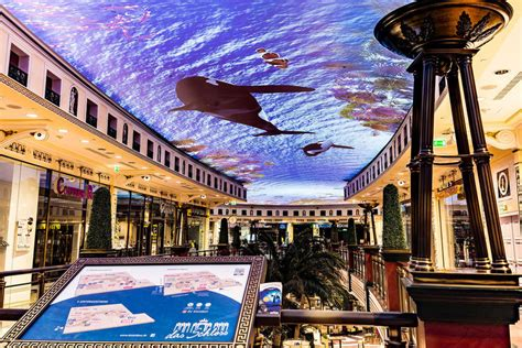 ceiling projection installations das schloss