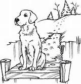Dog Dock Stamps Rubber Snowy Stampin Outdoors Lake Coloring Patterns Burning Wood Stamp sketch template