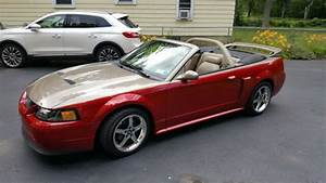 Ford Mustang 2002 GT for sale online | eBay