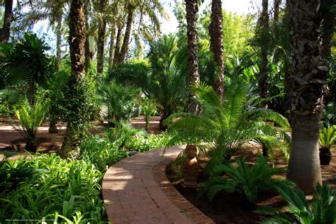 bureau majorelle tlcharger fond d 39 ecran jardin maroc marrakech jardin