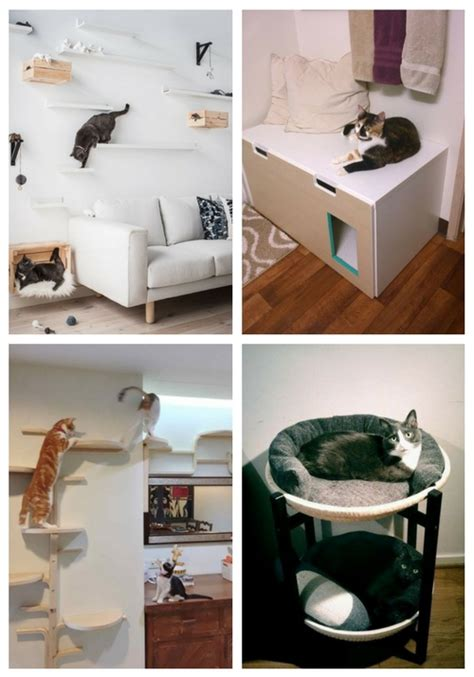 ikea hacks   cat  love comfydwellingcom