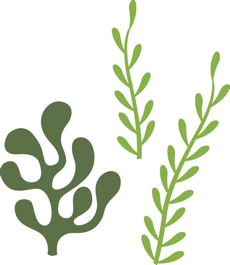 All of these seaweed resources are for free download in addition to png format images, you can also find seaweed vectors, psd files and hd background images. Seaweed SVG Cut File - Snap Click Supply Co.