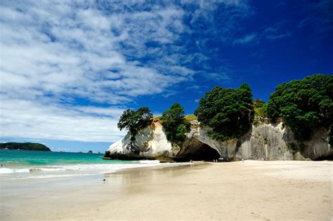 Cathedral Cove - Coast in New Zealand - Thousand Wonders