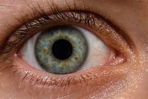 Vista Art Projects: Eye