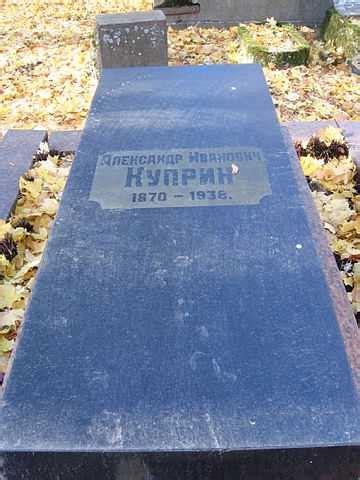 «да, это правда так, найден мертвым». Автобиография куприн - Куприн, Александр Иванович — Википедия