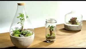 Acheter Terrarium Plante : comment r aliser un terrarium dans un bocal en verre en 2 minutes diy youtube ~ Teatrodelosmanantiales.com Idées de Décoration