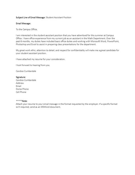 Summer Cover Letter by Sle Cover Letter Summer Essaysbank X Fc2