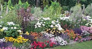 Blumenbeete Zum Nachpflanzen : gemischtes beet mit stauden staudenbeet pinterest staudenbeet stauden und gartenwelt ~ Yasmunasinghe.com Haus und Dekorationen