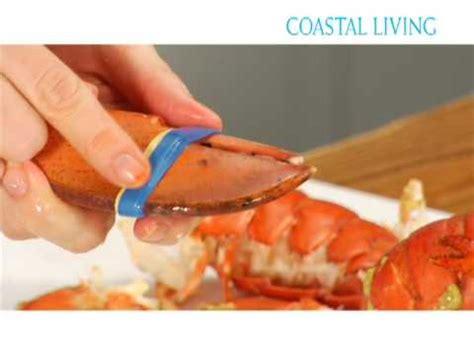 comment cuisiner un homard comment cuire un homard ricardo cuisine funnycat tv