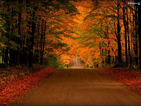 Free Animated Autumn Wallpaper - free autumn screensavers wallpaper wallpapersafari