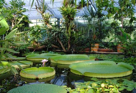 Botanischer Garten Hamburg Praktikum by Botanischer Garten Berlin Veranstaltung Gt Botanischer