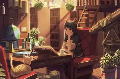 Anime Studying Library Wallpapers Books Study Neko