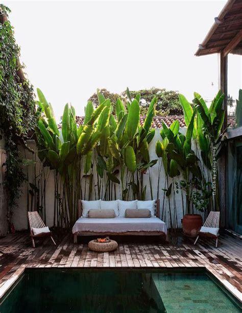 tropical backyards tropical backyard plunge pool