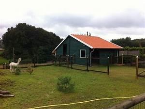 Carport Dach Holz : stallgeb ude und carport zhg holz dach ~ Sanjose-hotels-ca.com Haus und Dekorationen