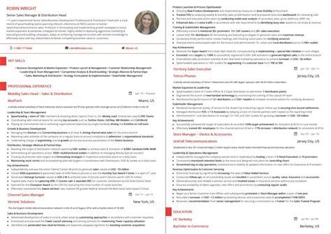 best sales resume best sales resume templates 2019 sles