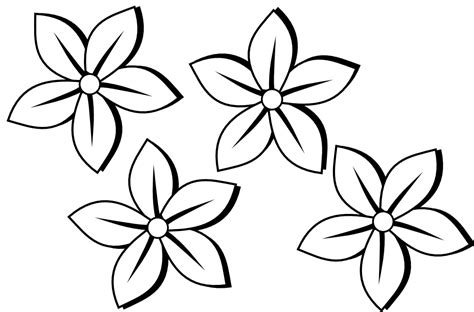 Jasmine Flower Clip Art Black And White Sketch Coloring Page