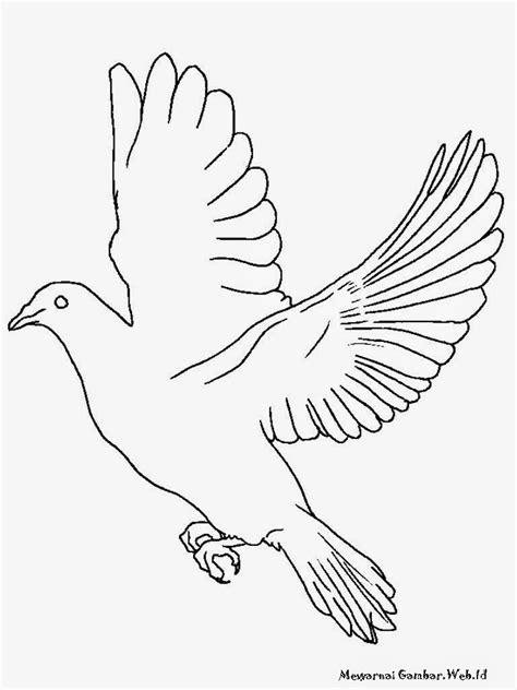 gambar mewarnai gambar burung elang di rebanas