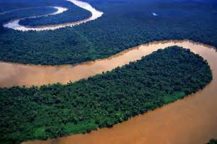 Meandering Amazon River, Peru | General Stock