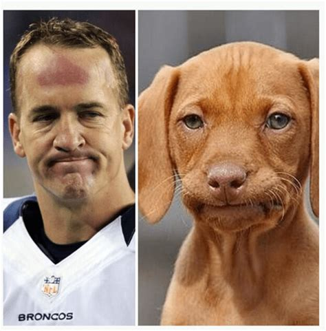 Uh Oh Guys I Think Peyton Manning Might Be Involved In