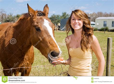 horse teen young farm stockfresh lisafx photograph dreamstime