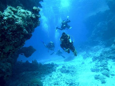 Free photo: Diving, Underwater, Sea, Float - Free Image on ...