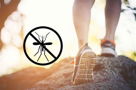 was hilft gegen stechmücken im schlafzimmer was tun gegen m 252 ckenstiche