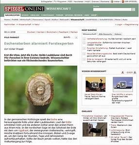 Schleimpilze Im Garten : bonsai art bonsai im internet ~ Lizthompson.info Haus und Dekorationen