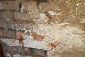 Salpeter In Der Wand : salpeter im mauerwerk entfernen 6 tipps gegen salpeter ~ A.2002-acura-tl-radio.info Haus und Dekorationen