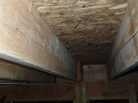 Mold Growth on Joists in Crawlspace  Testing & Cleanup